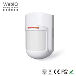 Wired Motion Sensor